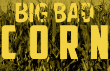 Infographic: Big Bad Corn