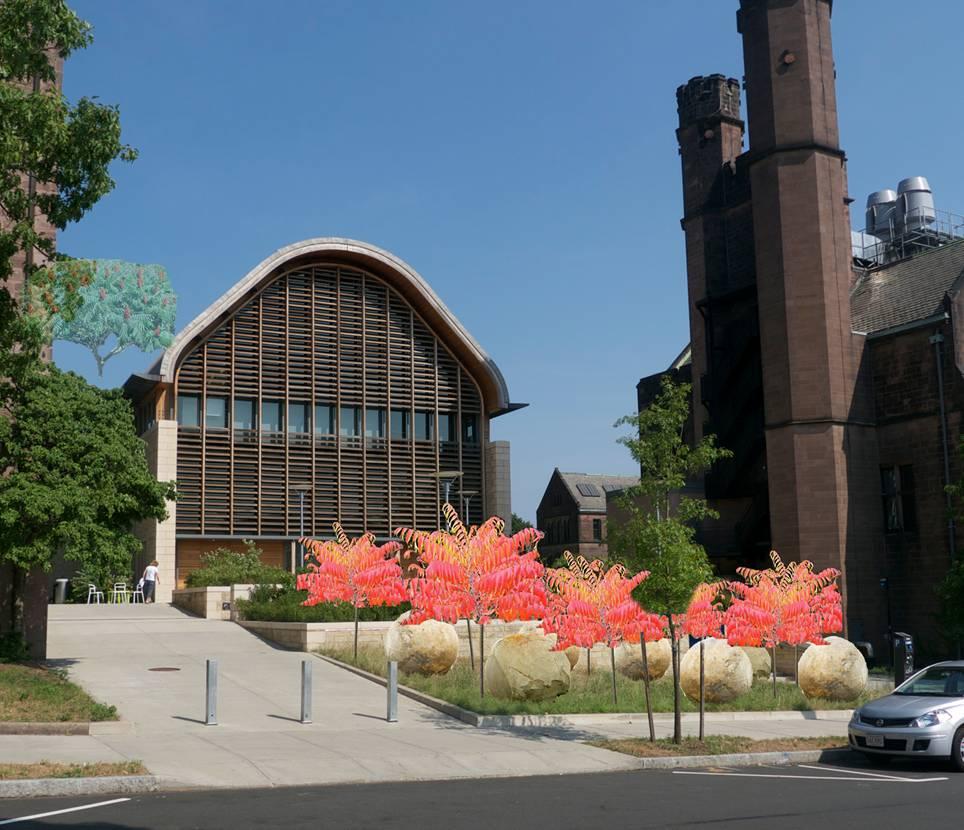 A Boulder Vision for Kroon Hall