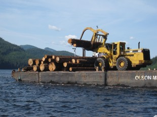 The Sealaska operation in Sitkoh Bay (Chichagof Island) loading their barge with large-diameter logs for transport to Huna, and then most likely to Asia.