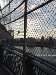 Ben Friedman in New York City, part 2