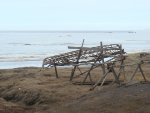 The wooden frame of a whaling boat sits near the coast of Barrow, Alaska.  Photo courtesy of the author.