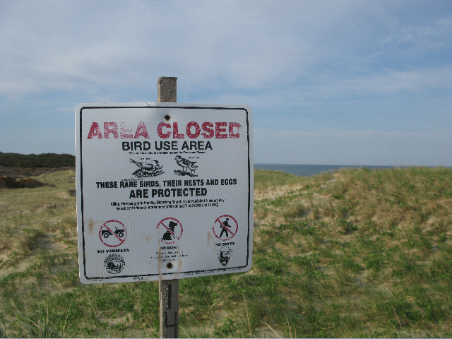 A sign warns visitors of fragile plover nesting habitat. Photo by the author.