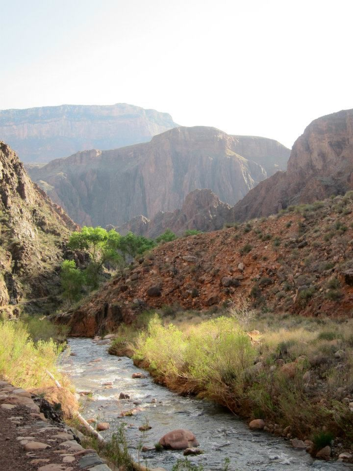 Bright Angel Creek winds through the canyon and eventually feeds into the Colorado River. Photo by the author.